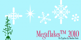 MegaFlakes 2010
